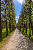 Park in Museum-Estate Arkhangelskoye - Moscow Russia Royalty Free Stock Photos