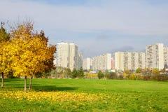 Park na miasta przedmieściu Zdjęcie Stock