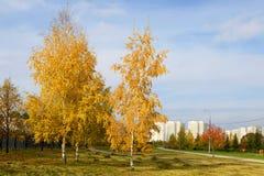 Park na miasta przedmieściu Zdjęcia Royalty Free