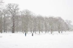 Park na sneeuw Stock Afbeeldingen