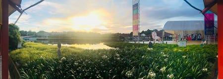 Park na zewnątrz nauki centre Singapur obraz stock