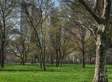 Park nabrzeżem fotografia royalty free