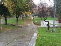 Park nach Regen Stockfoto