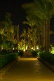 Park nachts stockfoto