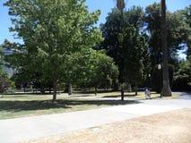 Park nahe Kalifornien-Kapitol Lizenzfreies Stockbild