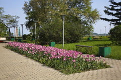 Park in Nakhodka. Primorsky Krai. Russia Stock Photos