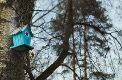 Park named Belousov - a birdhouse. Royalty Free Stock Images