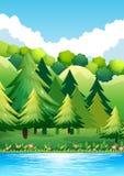 Park Narodowy ilustracja wektor