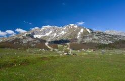 Park Narodowy Durmitor przy wczesną wiosną, Montenegro Obraz Stock