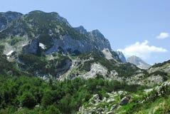 Park Narodowy Durmitor w Monte murzynie Zdjęcie Royalty Free