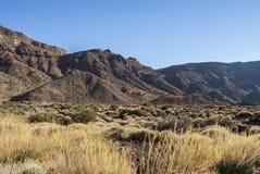 Park Narodowy (El Teide, Tenerife -) Obraz Stock
