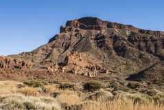 Park Narodowy (El Teide, Tenerife -) Obraz Royalty Free