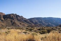 Park Narodowy (El Teide, Tenerife -) Zdjęcia Stock