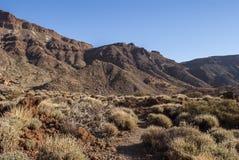 Park Narodowy (El Teide, Tenerife -) Obrazy Royalty Free