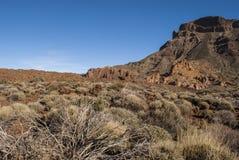 Park Narodowy (El Teide, Tenerife -) Zdjęcie Stock