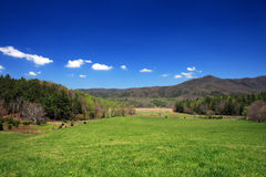 park narodowy górski wędzone Zdjęcie Royalty Free