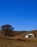 park narodowy lasowy saihanba Zdjęcie Stock
