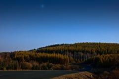 park narodowy lasowy saihanba Obrazy Stock