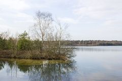 Park Narodowy Maasduinen, holandie Obraz Royalty Free