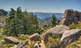 Park Narodowy Peneda Geres Fotografia Royalty Free