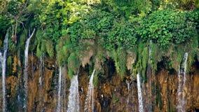 Park Narodowy Plitvicka Jezera europejczycy zbiory wideo