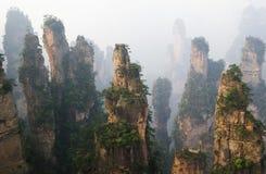 park narodowy porcelanowy lasowy park narodowy Zhangjiajie Obraz Stock
