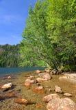 Park Narodowy Sumava, republika czech Obrazy Stock