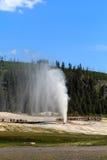 park narodowy Yellowstone obraz stock