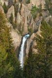 park narodowy Yellowstone Zdjęcie Royalty Free