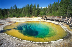 park narodowy Yellowstone Obraz Stock