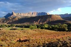 park narodowy zion Zdjęcie Stock