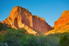 park narodowy zion Obraz Royalty Free