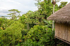 Eco Loge, National Park Yasuni Royalty Free Stock Photo