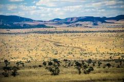 Park nationales Isalo, Madagaskar Stockfotografie