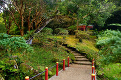 Park near the Byodo-in temple on Oahu Stock Images