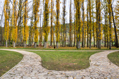 Park near Douro river, Soria (Spain) Stock Photography