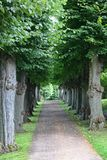 Park near Frederiksborg palace royalty free stock photography