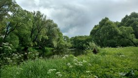 The park near river. The park with flowers near river Royalty Free Stock Photography