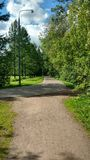 The park near river in Moscow. The park with flowers near river Stock Image