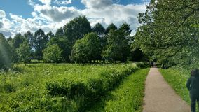 The park near river in Moscow. The park with flowers near river Stock Photo