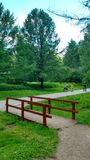 The park near river in Moscow. The park with flowers near river Royalty Free Stock Photography