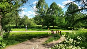 The park near river in Moscow. The park with flowers near river Stock Photos