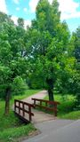 The park near river in Moscow. The park with flowers near river Royalty Free Stock Photo