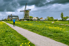 Park in the Netherlands in a sunny pring day Stock Photo