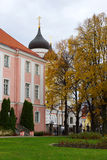 Park next to the Alexander Nevsky Cathedral in Tallinn. Estonia. Stock Photography