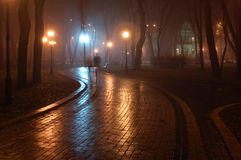 Park at night. Mariinsky foggy park in Kiev, Ukraine stock images