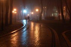 Park at night. Mariinsky foggy park in Kiev, Ukraine Stock Images