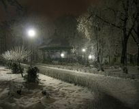 Park at night. Dreamy wiew of a park in the night Royalty Free Stock Images