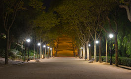Park at Night Royalty Free Stock Photos