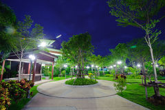 Park at night Stock Photography